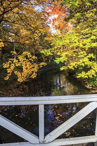 Naturbrücke über die Ilm